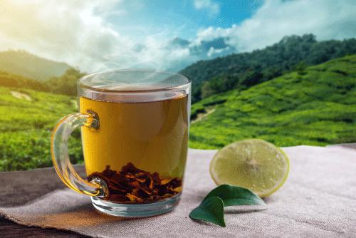 ExporterSupplier & Manufacturer of Darjeeling TeaMunnar TeaSikkim Tea Parshva Exim